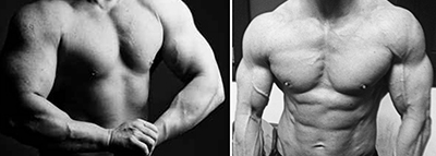 Clean vs. Dirty Bulking