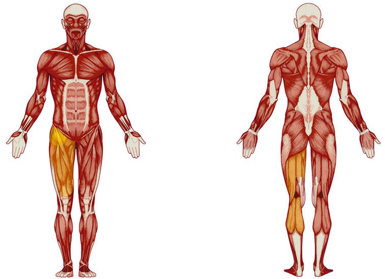 Bein Übungen