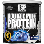 Whey Casein Protein DOUBLE PLEX® - 750 g, Blueberry